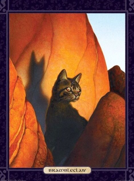 Brambleclaw from Cats of the Clans/ The Ultimate Guide  The son of