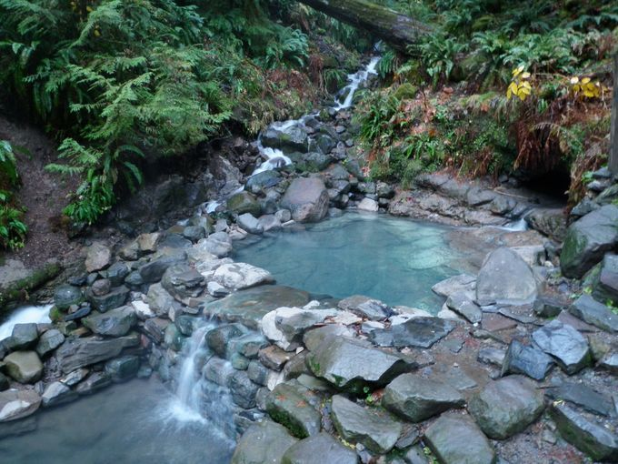 Cougar Hot Springs Oregon Water Gushes Out Of A Small