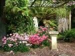 Nice garden colors.