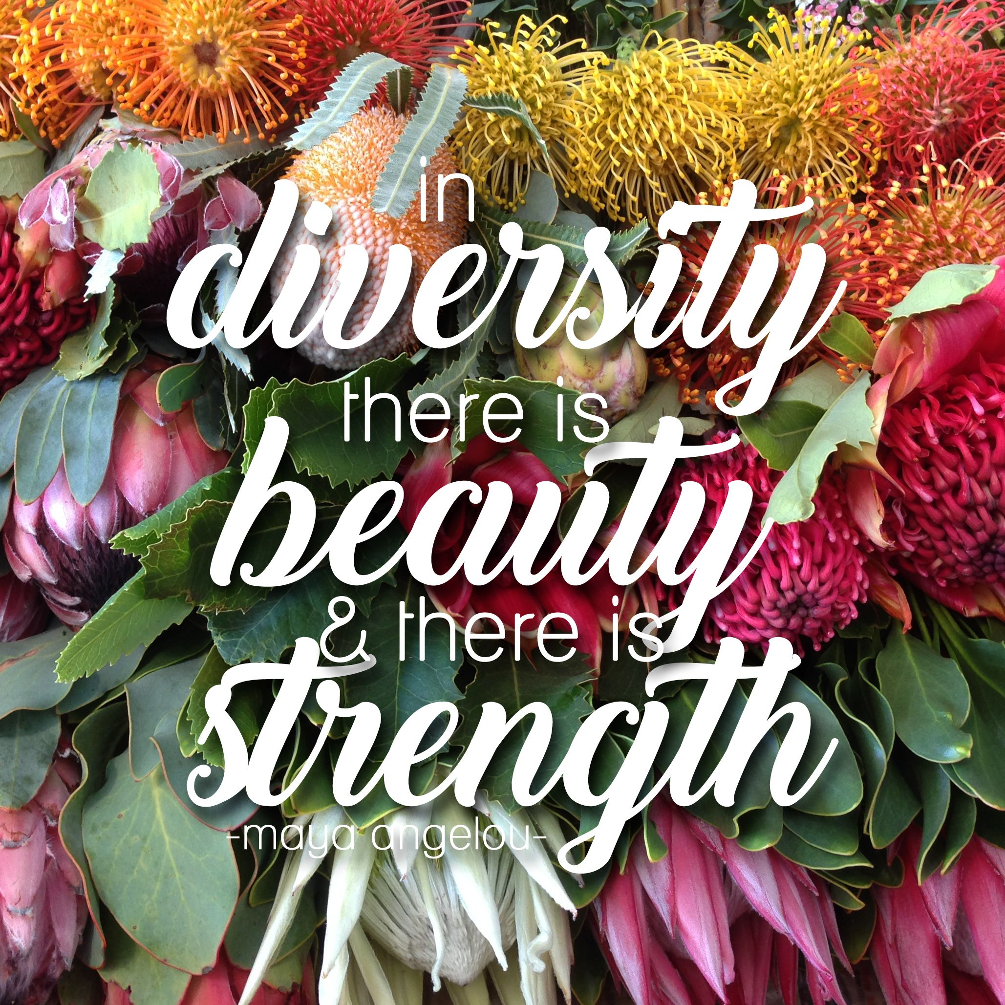 In Diversity There Is Beauty And There Is Strength