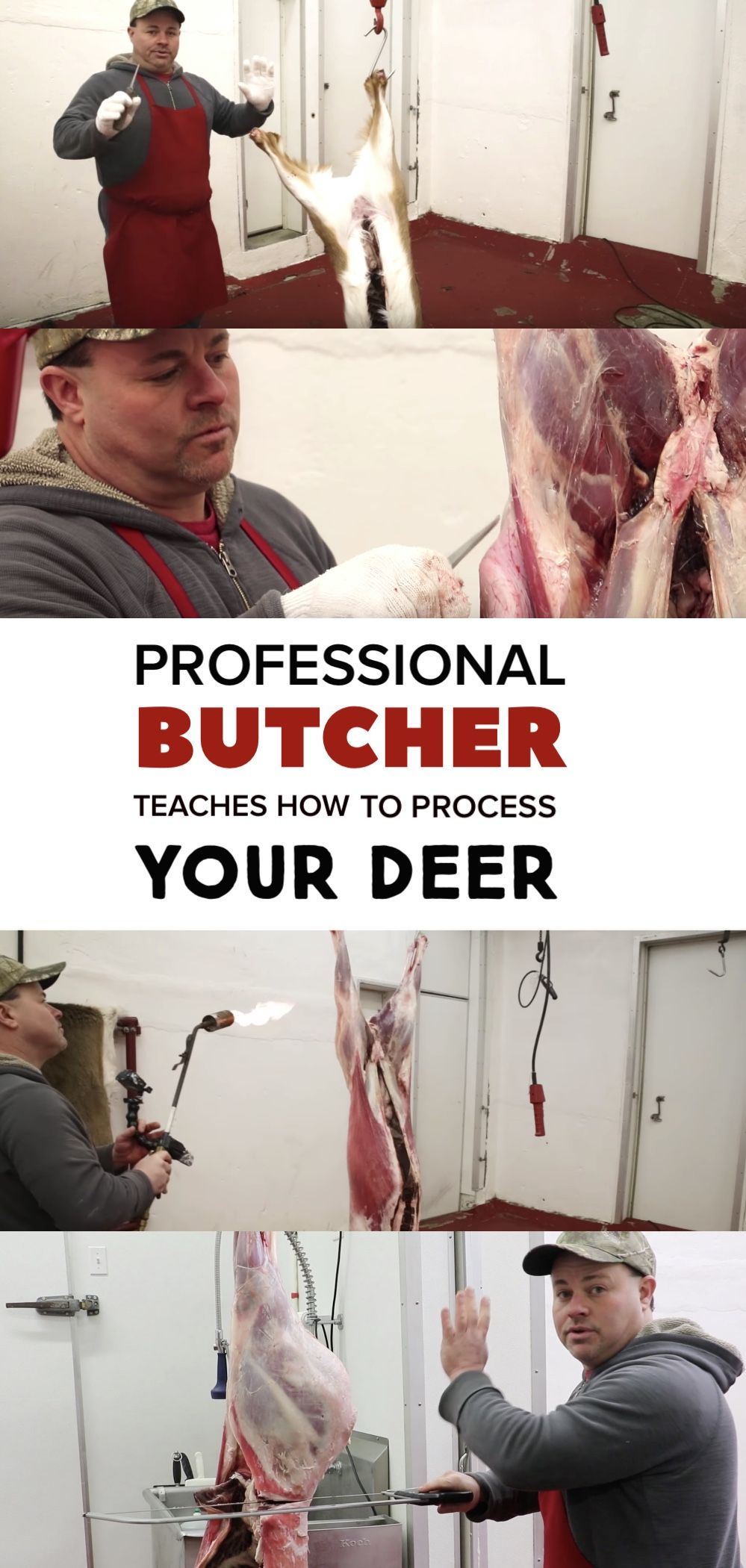 how to process a deer hide