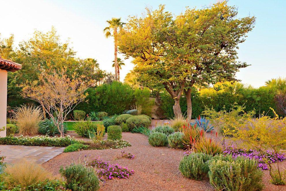 Dazzling Desert Landscaping Method Agave Backyard Desert Ground