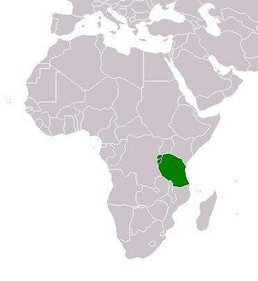 Schutzgebiet Deutsch-Ostafrika