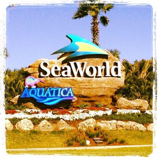Seaworld San Antonio Seaworld San Antonio Sea World San Antonio Theme Parks
