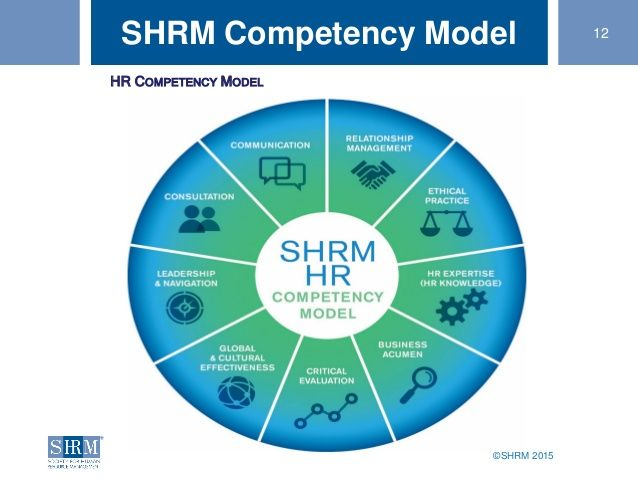 169 Shrm 2015 12shrm Competency Model Hr Competency Model
