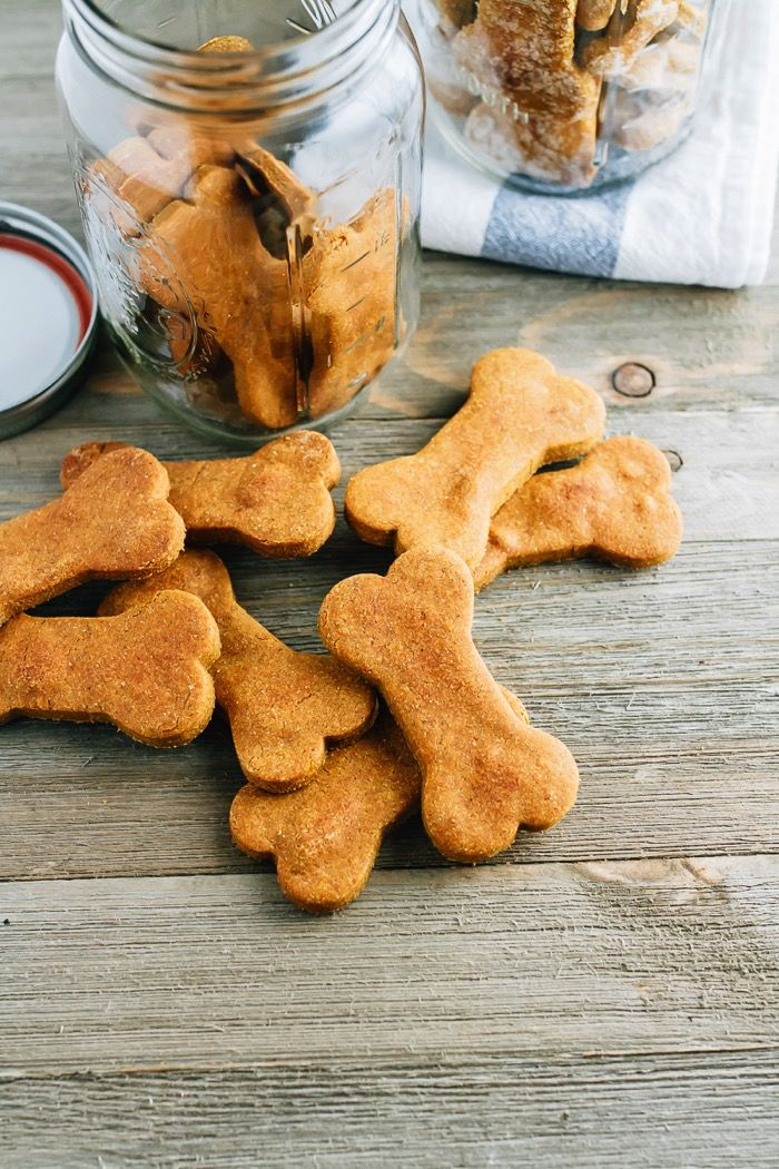 Homemade peanut butter and pumpkin dog treats! They're super easy to make and the perfect fall treat for your furry friend.