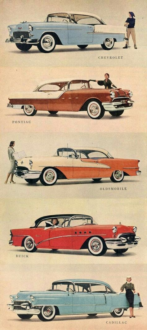 GM\'s 1955 line of cars   Misc vintage Cars   Pinterest   Pirate ...