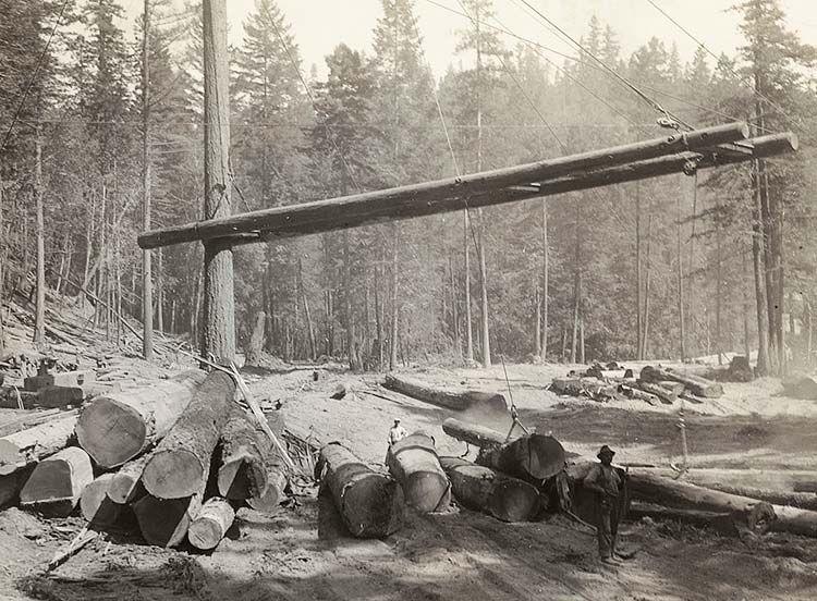 Caspar Lumber Company History Of A Mendocino Redwood Logging Railroad Company Mendocino History Logging Industry