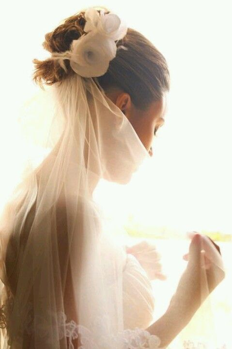Up-do and gorgeous veil