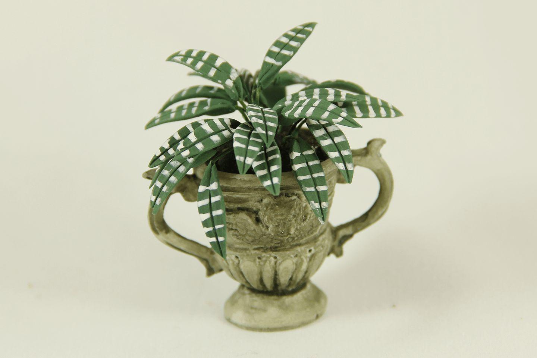 Fern in Grey Angel Pot
