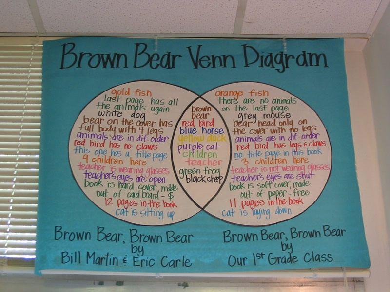 Brown Bear Diagram Car Towing Socket Wiring Venn Reading