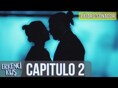 18 Pájaro Soñador Erkenci Kus Capitulo 2 Audio Español Youtube Audio Pajaros Español