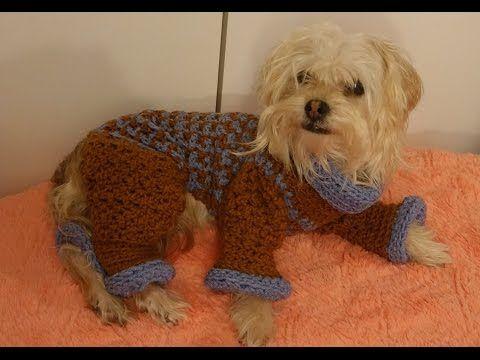 Como Hacer Un Sueter Para Perro Tejido A Crochet Youtube