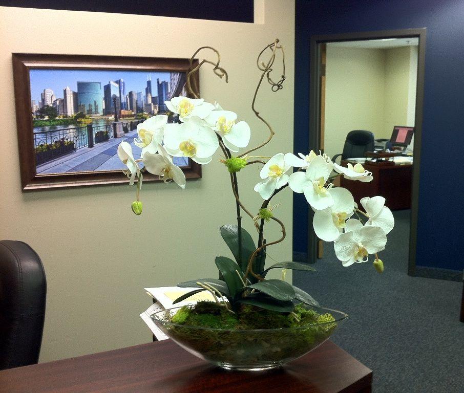 Simple, elegant orchids for a reception desk | Plant decor ...