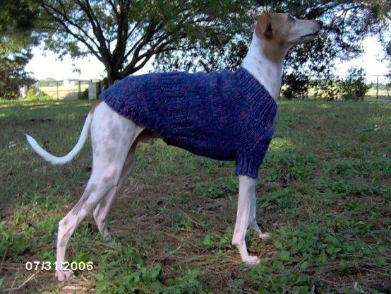 Free Custom Italian Greyhound Sweater Knitting Pattern