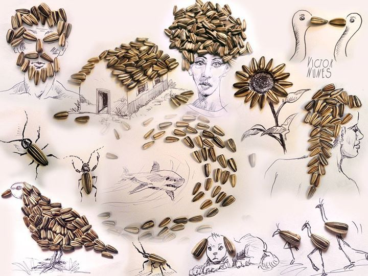 Sunflower Line Drawing : Artist victor nunes has created a series of 3d illustrations using