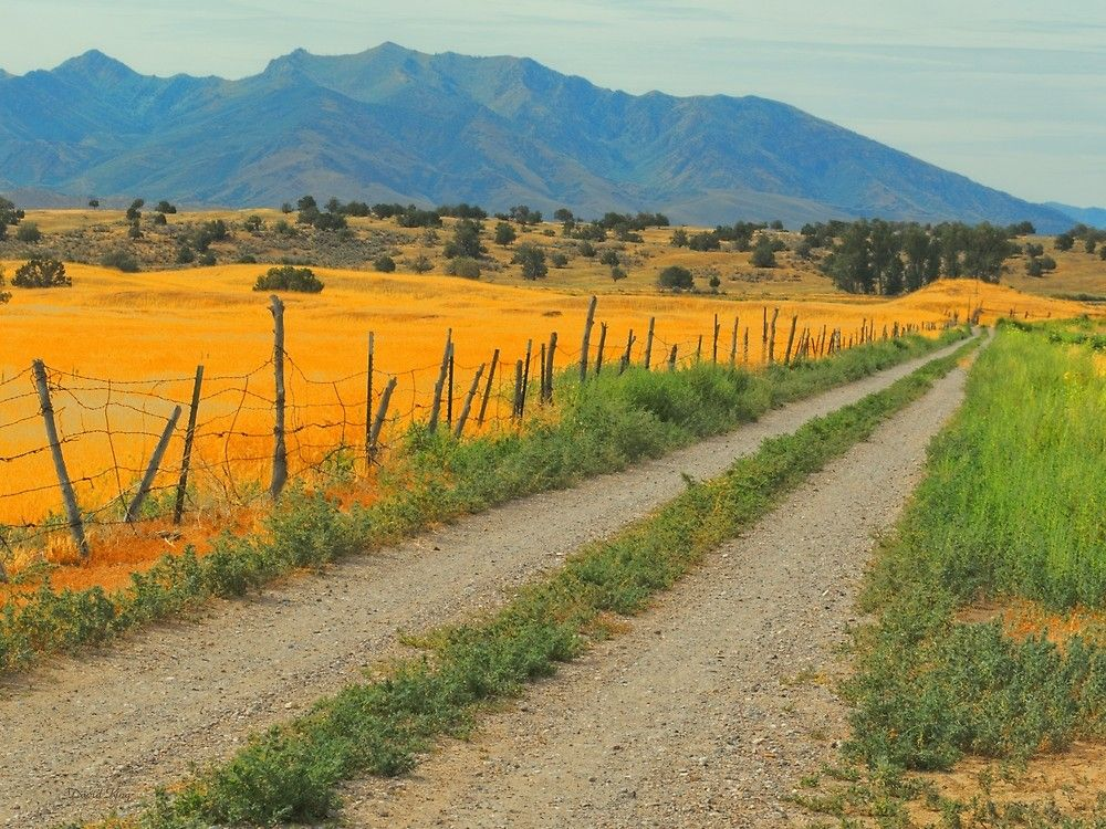 One of the many Utah ranch roads that lead into the distant fields
