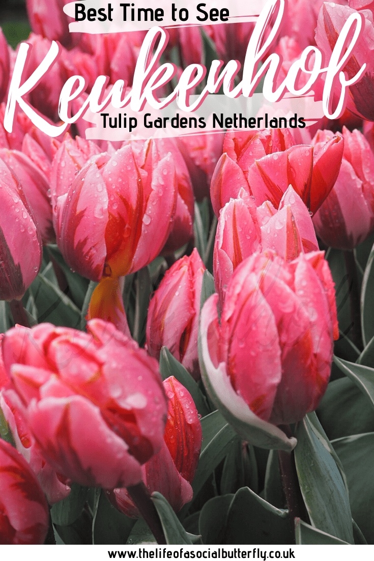 Between time and difference uk holland Time difference