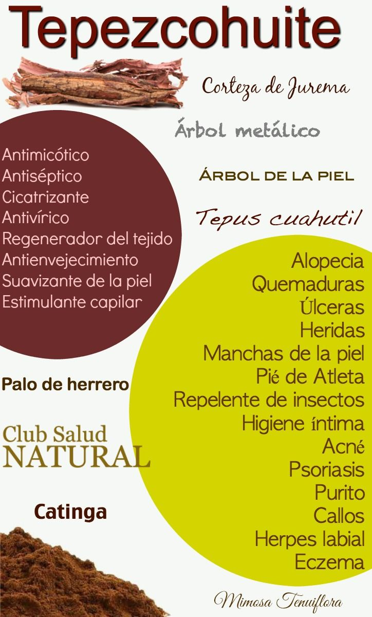 Pin En Plantas Medicinales