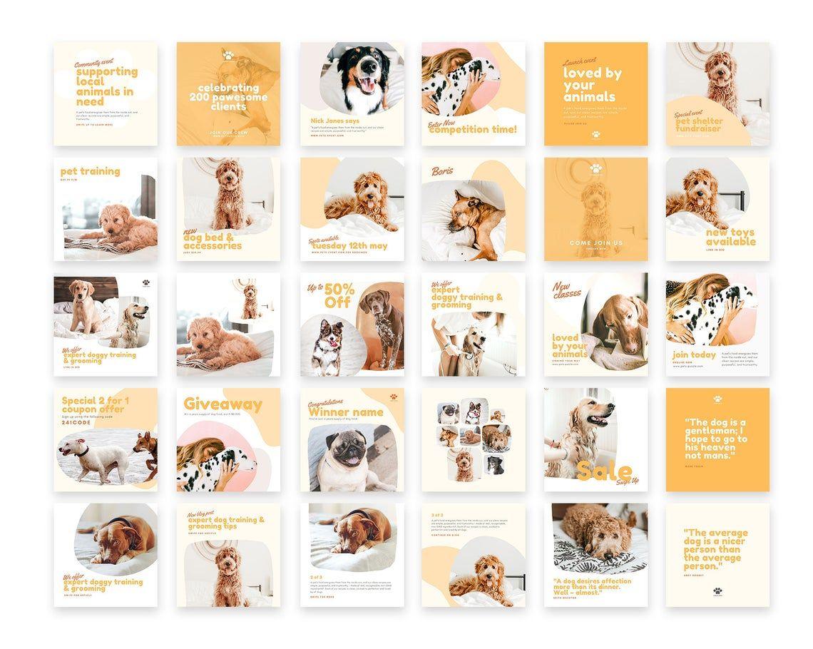 Pets Engagement Booster Instagram Post Template Social Media Etsy In 2020 Instagram Post Template Instagram Branding Pet Businesses