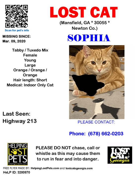 Lost Cat Mansfield Ga Mar 09 2020 Closest Intersection