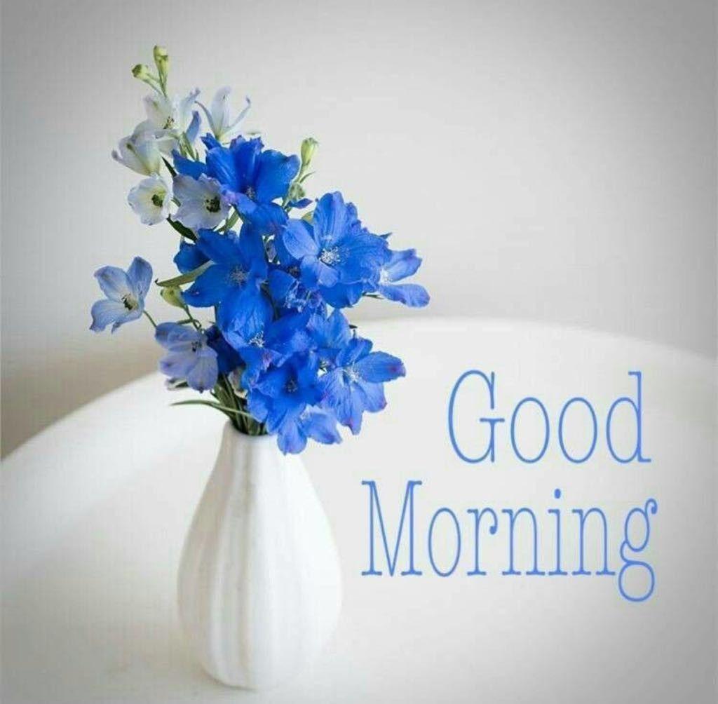 Good Morning | อรุณสวัสดิ์, วันเกิด, ดอกไม้