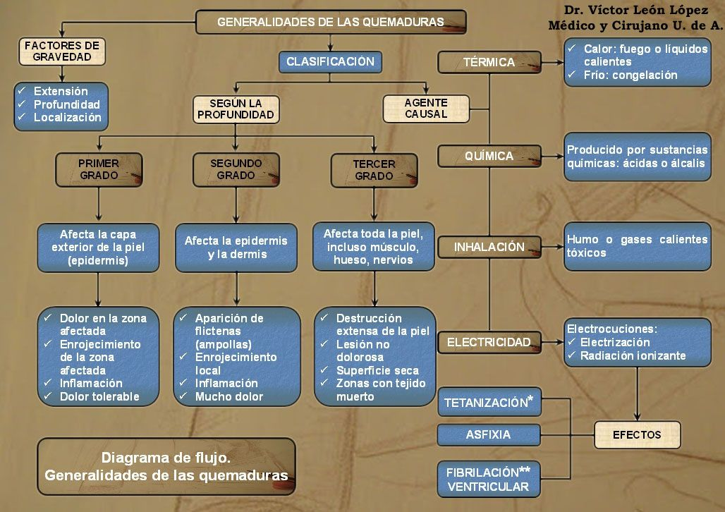 Primeros auxilios. Diagrama de flujo. Generalidades de las ...