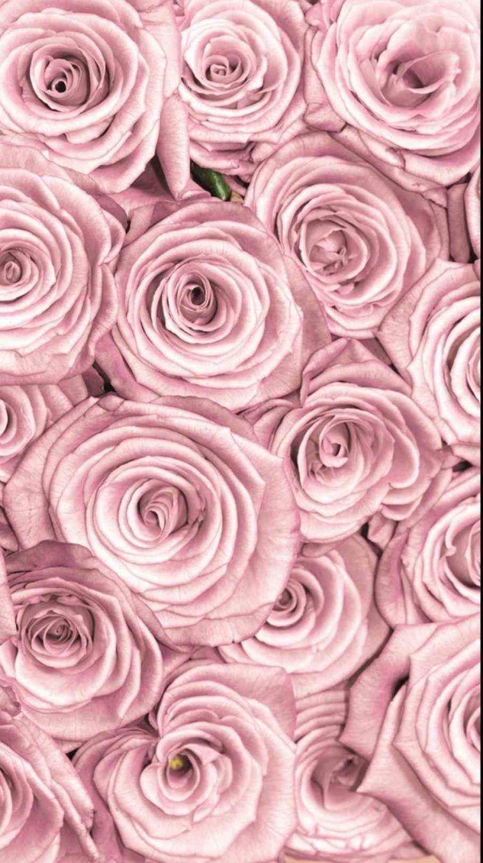 Wallpaper Kirsten Ashley Gold Marble Rose Rose Gold Theme