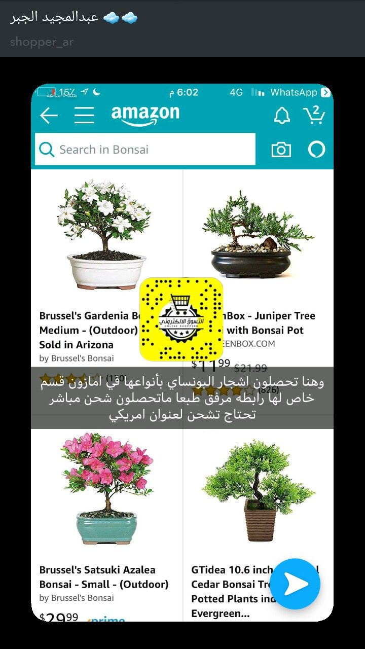 Pin By Rania On امي Food Decoration Plants Flowers