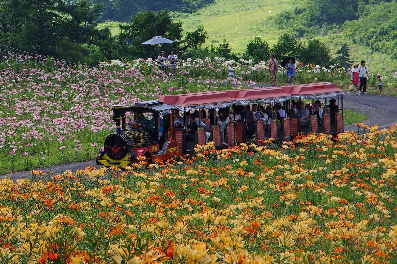ファインド トラベル 観光旅行 絶景 旅行