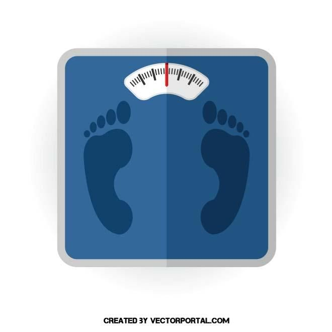 Body Weight Scale Vector Image Body Weight Scale Weight Scale Body Weight