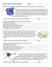 Darwins Natural Selection Worksheet Natural Selection Teaching