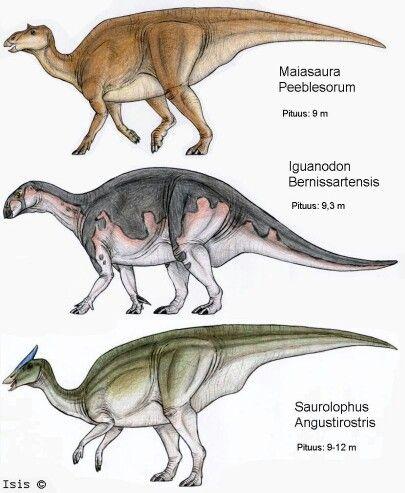 Ornithopods Ornithischian Dinosaurs Jurassic World Dinosaurs