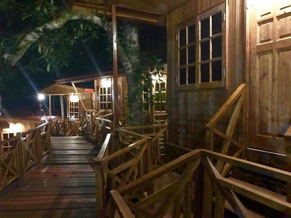 Pin by Azurez Walterz on Borneo