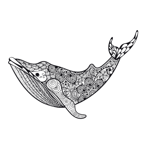 Killer Whale Coloring Page | zentangles | Pinterest | Killer whales ...