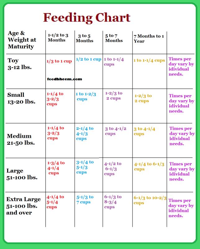 Dog diet chart and schedule dog diet chart and schedule puppies