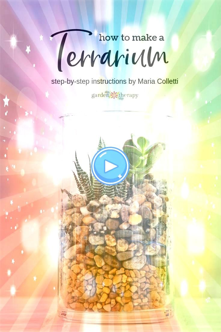 a Gorgeous Soilless Terrarium Garden Create a Gorgeous Pebble Terrarium Garden This stepby step tutorial comes to us from terrarium expert and author Maria Colletti Once...