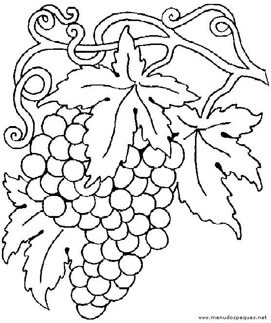 Dibujo Para Colorear Proyecto Escolar Vendimia Pinta Las Uvas Fall Coloring Pages Coloring Pages Coloring Books