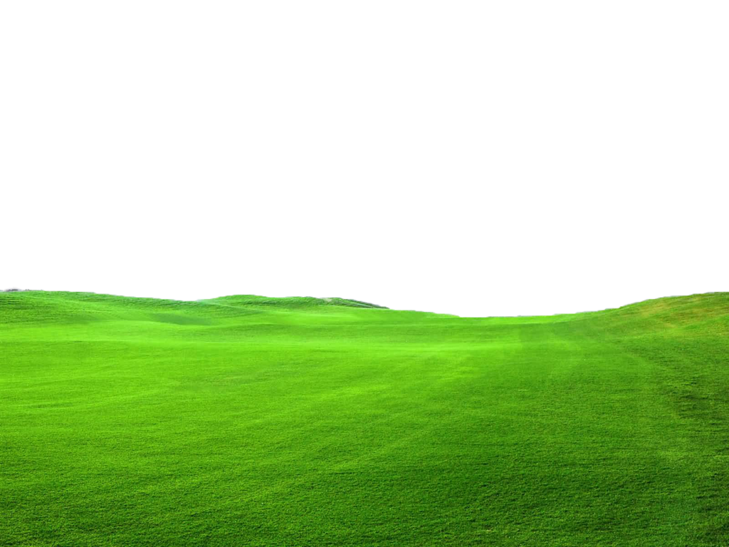 Green Grass Png File Use Freely By Theartist100 On Deviantart Grass Field Grass Landscape