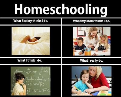 Homeschooling Homeschool Memes Homeschool Humor Homeschool Quotes Funny