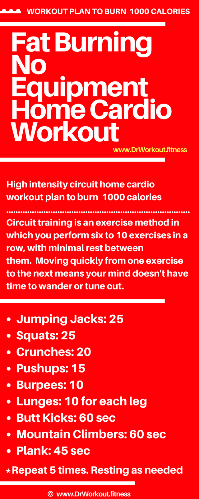 Fat Burning No Equipment Home Cardio Workout #cardioworkouts Fat Burning No Equi…
