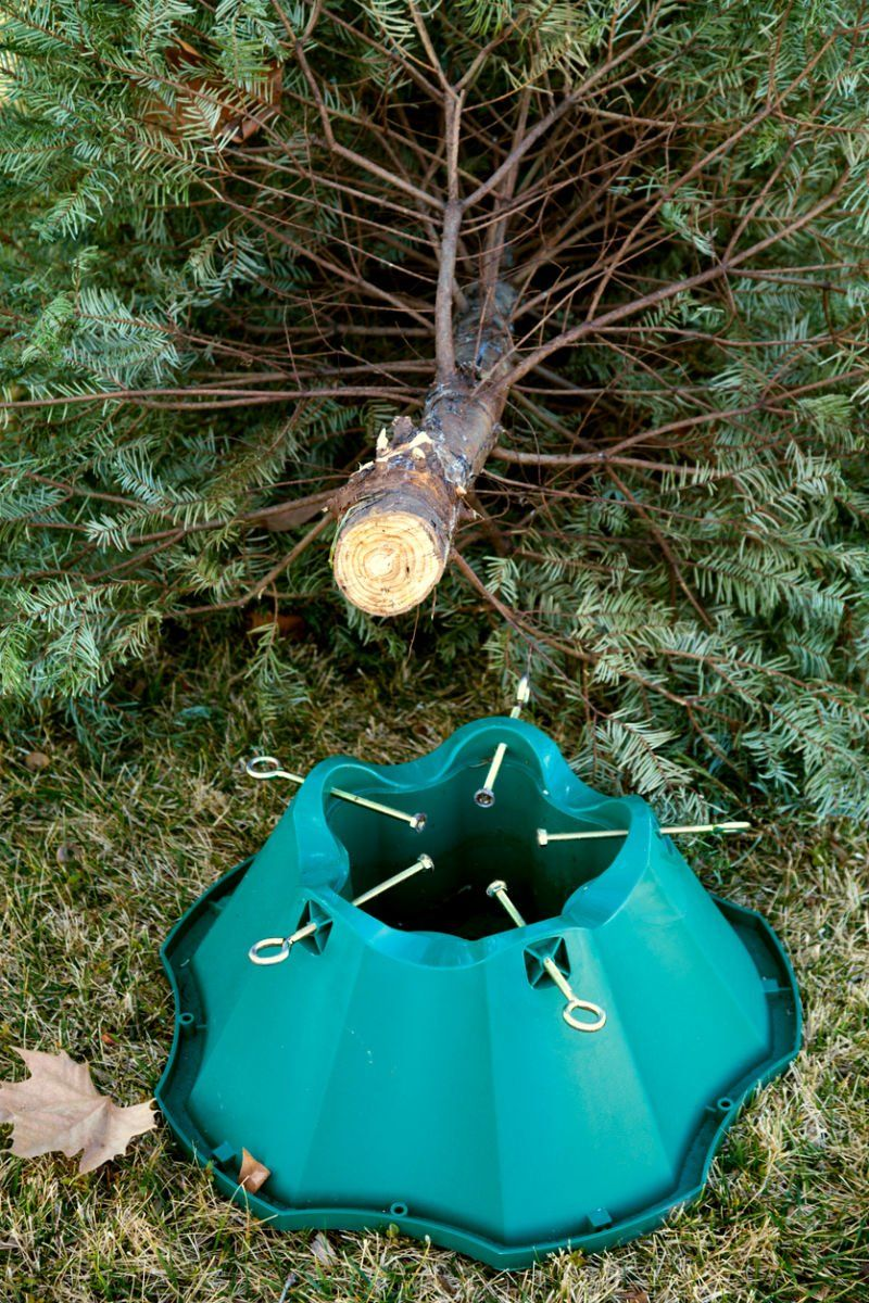 5 Best Christmas Tree Stands According To Happy Customers