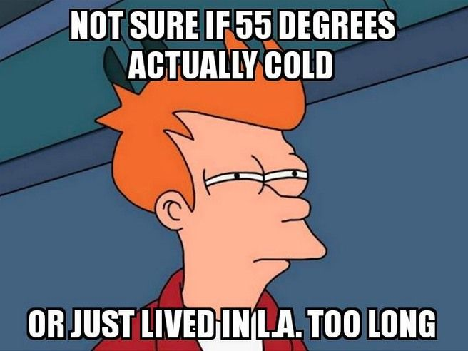 21 Memes About Living In Los Angeles That Every Angeleno Knows To Be True Weather Memes Cold Weather Funny Cold Humor