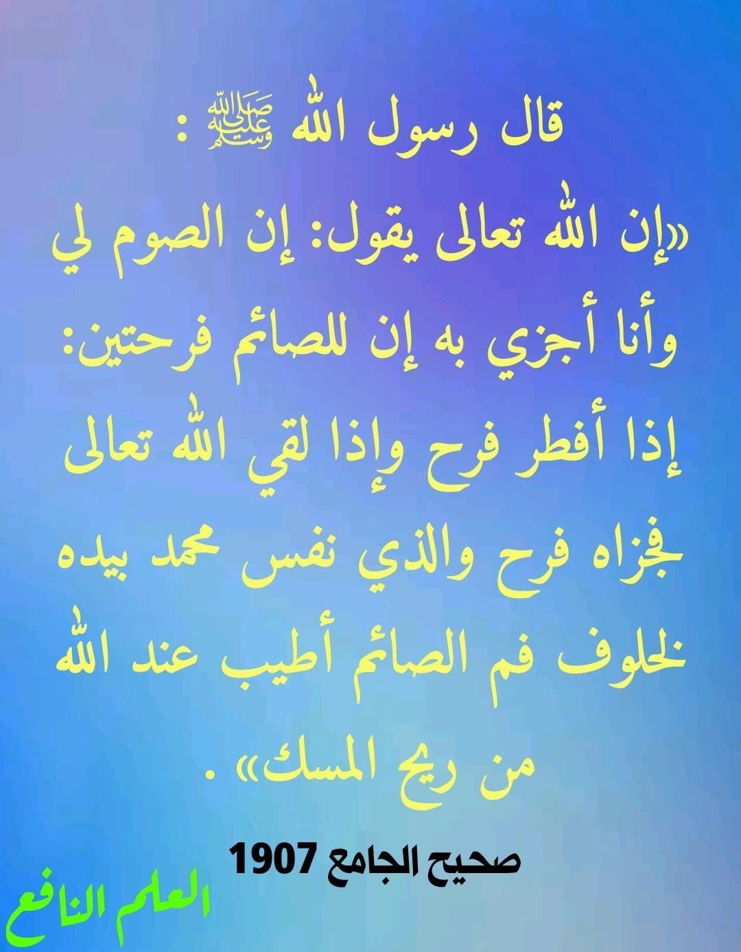 Pin By Saja Trad On I Love Allah Quran Islam The Prophet Miracles Hadith Heaven Prophets Faith Prayer Dua حكم وعبر احاديث الله اسلام قرآن دعاء Ramadan Hadith Jye
