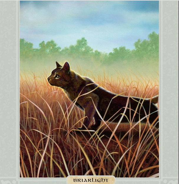 Hollyleaf, Jayfeather and Lionblaze pics from The Ultimate