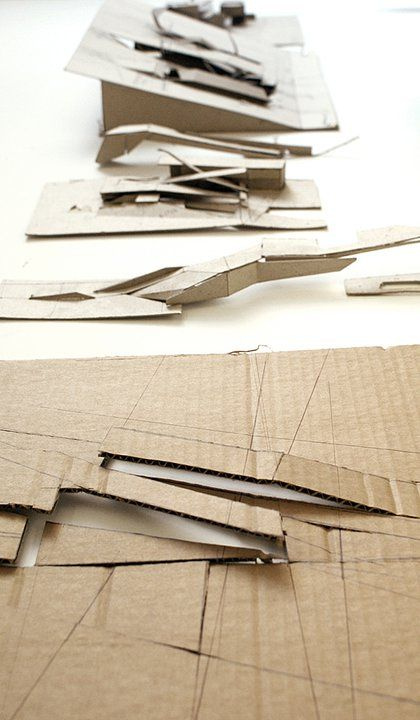 Rsica conceptual morphology courtesy of symbiosis designs for Conceptual model architecture