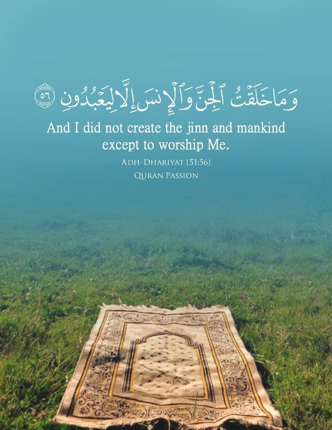 Pin By Zino On My Din Islamic Quotes Hadeeth Islamic Videos