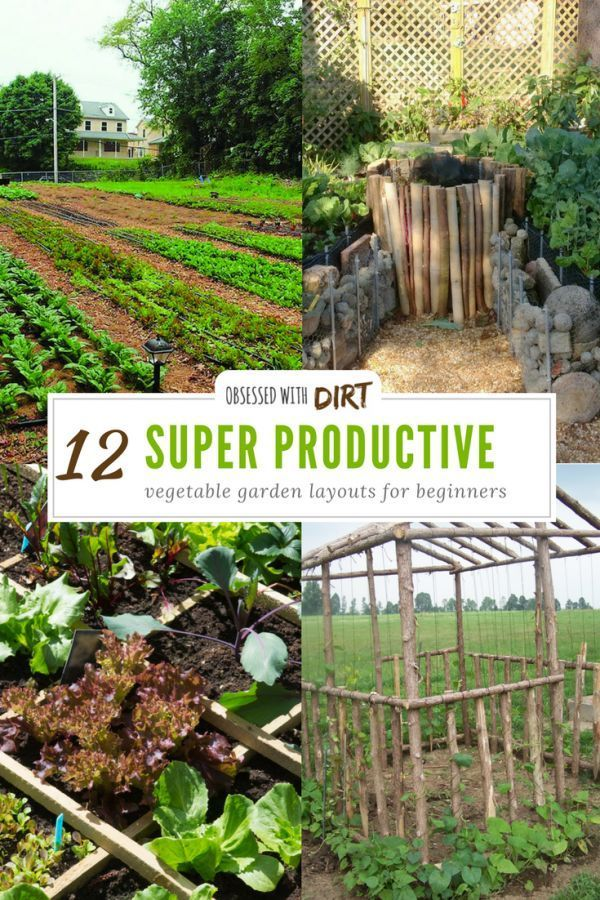 12 Ways To Grow A Successful Vegetable Garden (inc.Best Layouts)