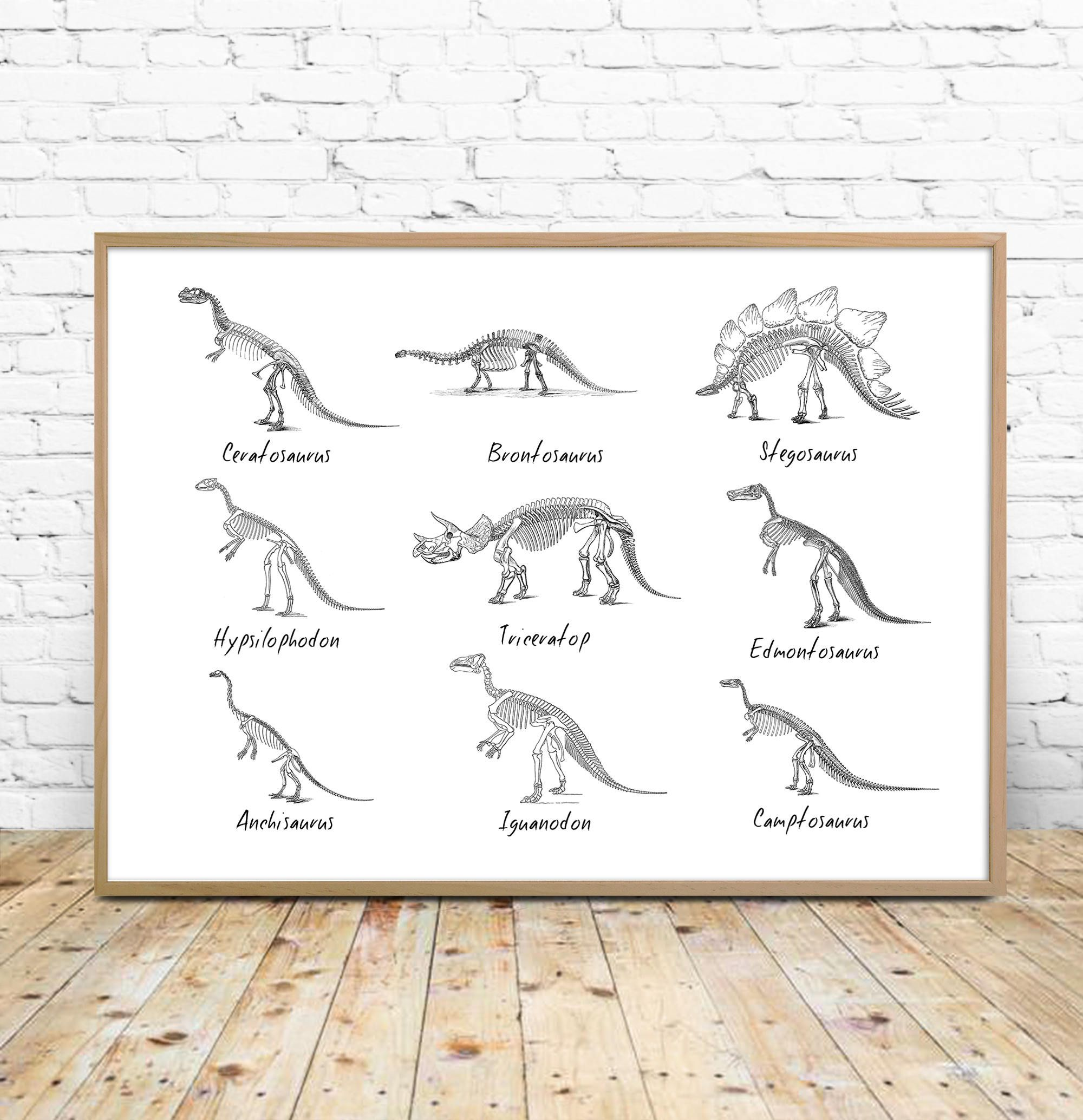 Dinosaur Art Printable, Dinosaurs chart, dinosaur list, species, paleontology printable, dinosaur decor, wall art, download, boy room print