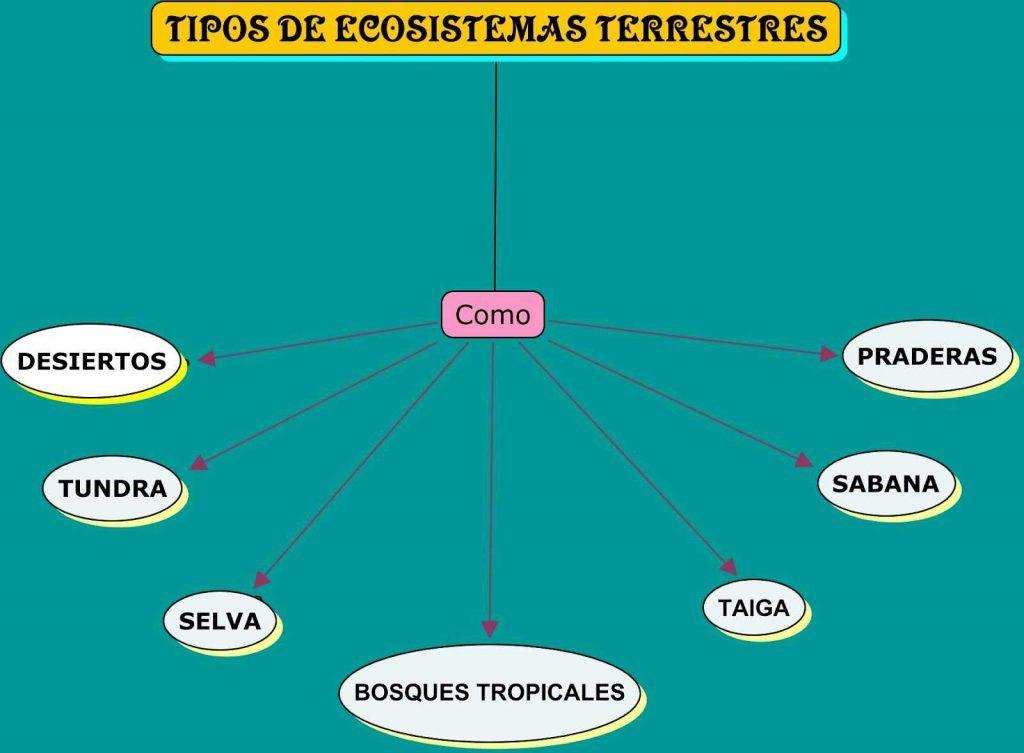 Los Ecosistemas Tipos De Ecosistemas Diferencias Y Cuadro Comparativo Cuadro Comparativo Tipos De Ecosistemas Ecosistemas Tipos De Fosiles